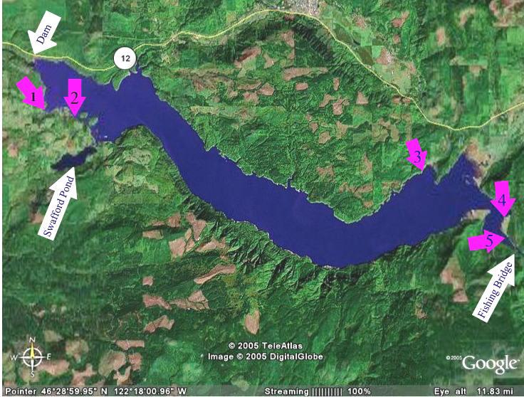 Image gallery riffe lake for Silver lake washington fishing