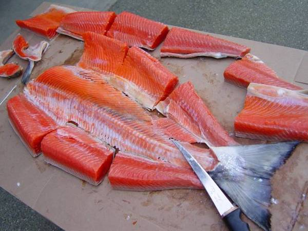 Filleting salmon for How to fish for salmon