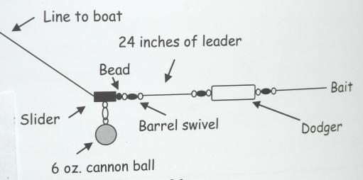 Kokanee Fishing